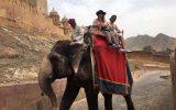 Jaipur, un stage incroyable